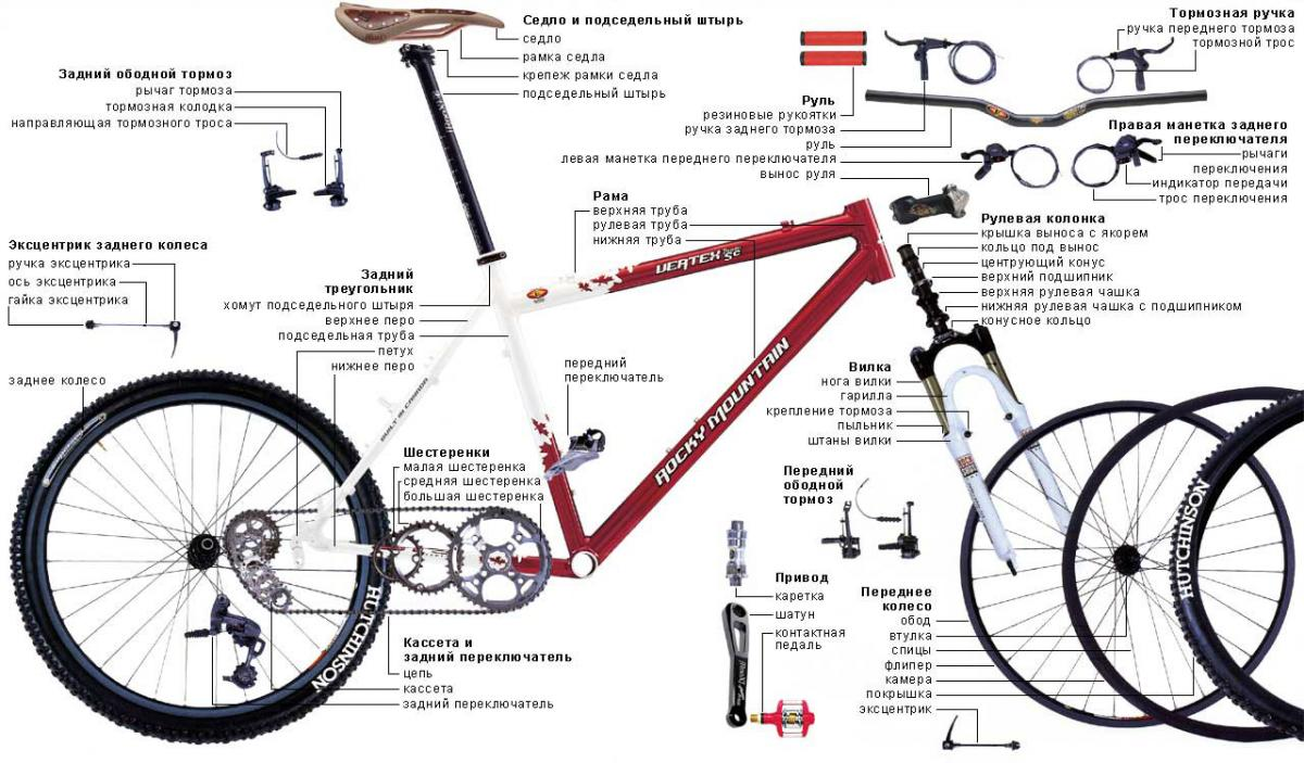 Dirt bike anatomy