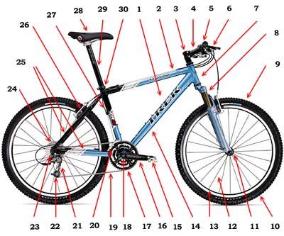 bike_structure.jpg